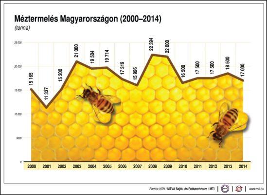 Egyre több a méh Magyarországon