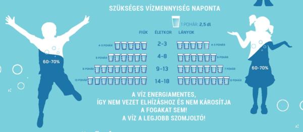 A víz szerepe a szervezetben