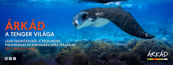 A tenger világa – interaktív kiállítás az ÁRKÁD-ban 2017. 05. 24-28.